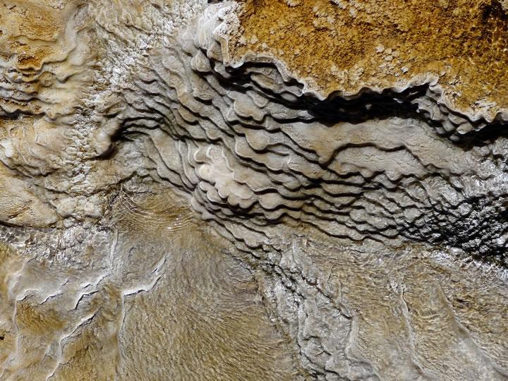 Yellowstone detail 4