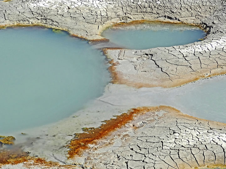 Yellowstone detail 7